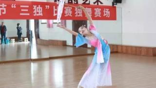 """浏阳市2019年中小学生艺术节""""三独""""比赛圆满落幕"""